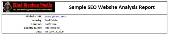SEO Website Analysis Report Example